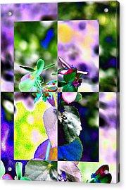 Flower 2 Acrylic Print by Tim Allen