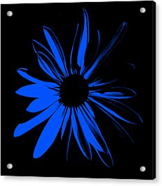 Acrylic Print featuring the digital art Flower 4 by Maggy Marsh