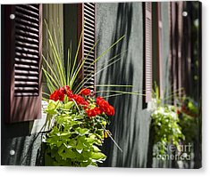 Flower Box Acrylic Print by Andrea Silies