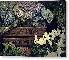 Flower Box Acrylic Print by JAMART Photography