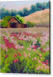 Flower Field Acrylic Print by Nancy Jolley