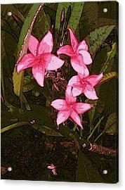 Acrylic Print featuring the digital art Flower Gems by Winsome Gunning