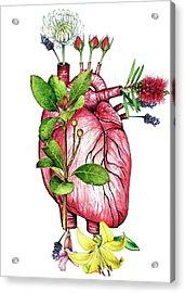 Flower Heart Acrylic Print by Heidi Kriel