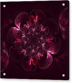 Flower In Bordo Acrylic Print by Anna Bliokh