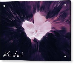 Acrylic Print featuring the photograph Flower In Purple by Miriam Shaw
