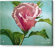 Flower In The Sky Acrylic Print by Melissa Tobia