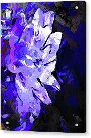 Flower Lavender Lilac Blue Acrylic Print