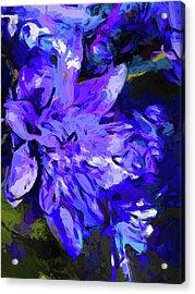 Flower Lavender Lilac Cobalt Blue Acrylic Print