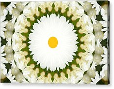 Acrylic Print featuring the photograph Flower Mandala - A by Anthony Rego