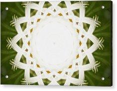 Acrylic Print featuring the digital art Flower Mandala - C by Anthony Rego