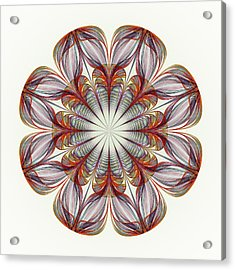 Flower Mandala Acrylic Print by Anastasiya Malakhova