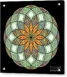 Acrylic Print featuring the digital art Flower Mandala Painted By Kaye Menner by Kaye Menner