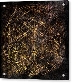 Flower Of Life 2 Acrylic Print by Edouard Coleman