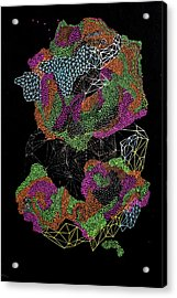 Acrylic Print featuring the drawing Flower Of Life by Maria Lankina