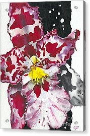 Flower Orchid 11 Elena Yakubovich Acrylic Print