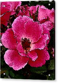 Flower Painting Collection 19 Acrylic Print