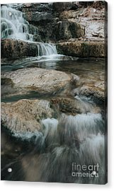 Acrylic Print featuring the photograph Flower Park by Iris Greenwell