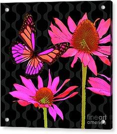 Flower Pop II, Floral Pop Art Echinacea, Butterfly Acrylic Print