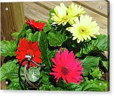 Flower Porch Acrylic Print by Nicholas Santillo