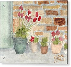 Flower Pots Acrylic Print by Ken Powers