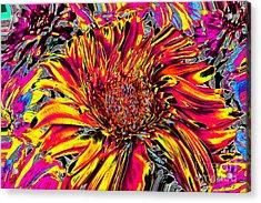 Flower Power II Acrylic Print