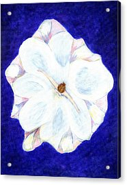 Flower Princess - Www.jennifer-d-art.com Acrylic Print by Jennifer Skalecke