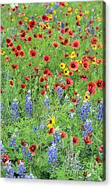 Flower Quilt Acrylic Print