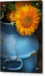 Flower - Sunflower - Little Blue Sunshine  Acrylic Print by Mike Savad