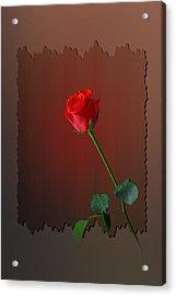 Flower Two Acrylic Print by Deepak Pawar