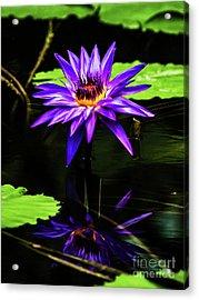 Flower_01 Acrylic Print
