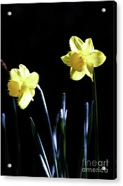 Flower_02 Acrylic Print