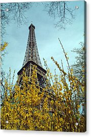 Flowered Eiffel Tower Acrylic Print by Charles  Ridgway
