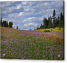Flowered Rise Acrylic Print