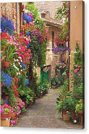 Flower Alley Italy Acrylic Print