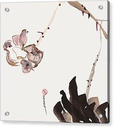 Flowering Alone Acrylic Print