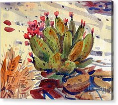 Flowering Opuntia Acrylic Print by Donald Maier