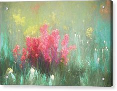 Acrylic Print featuring the photograph Flowering Prairie by James Barber