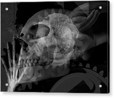 Flowering Skull Fossil Rewire Acrylic Print by Leigh Odom
