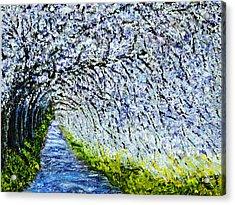 Flowering Tree Lane Acrylic Print