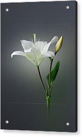 Flower..one Acrylic Print by Deepak Pawar