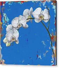 Flowers #9 Acrylic Print