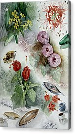 Flowers And Lace Acrylic Print by Karen Boudreaux