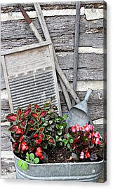 Flowers And Plants In Wash Tub Acrylic Print by Linda Phelps