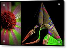 Acrylic Print featuring the digital art Flowers And Shapes by Irma BACKELANT GALLERIES