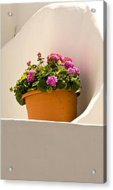Flowers And White Wall Acrylic Print by Xavier Cardell
