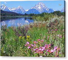 Flowers At Oxbow Bend Acrylic Print by Marty Koch