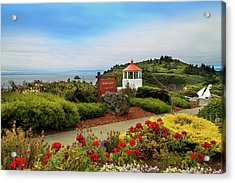 Acrylic Print featuring the photograph Flowers At The Trinidad Lighthouse by James Eddy