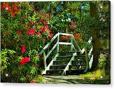 Flowers Bloom Alongside Magnolia Plantation Bridge - Charleston Sc Acrylic Print
