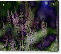 Flowers By Moonlight Acrylic Print