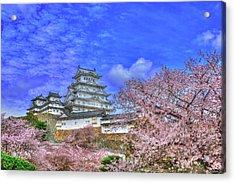 Flowers Era Acrylic Print by Midori Chan